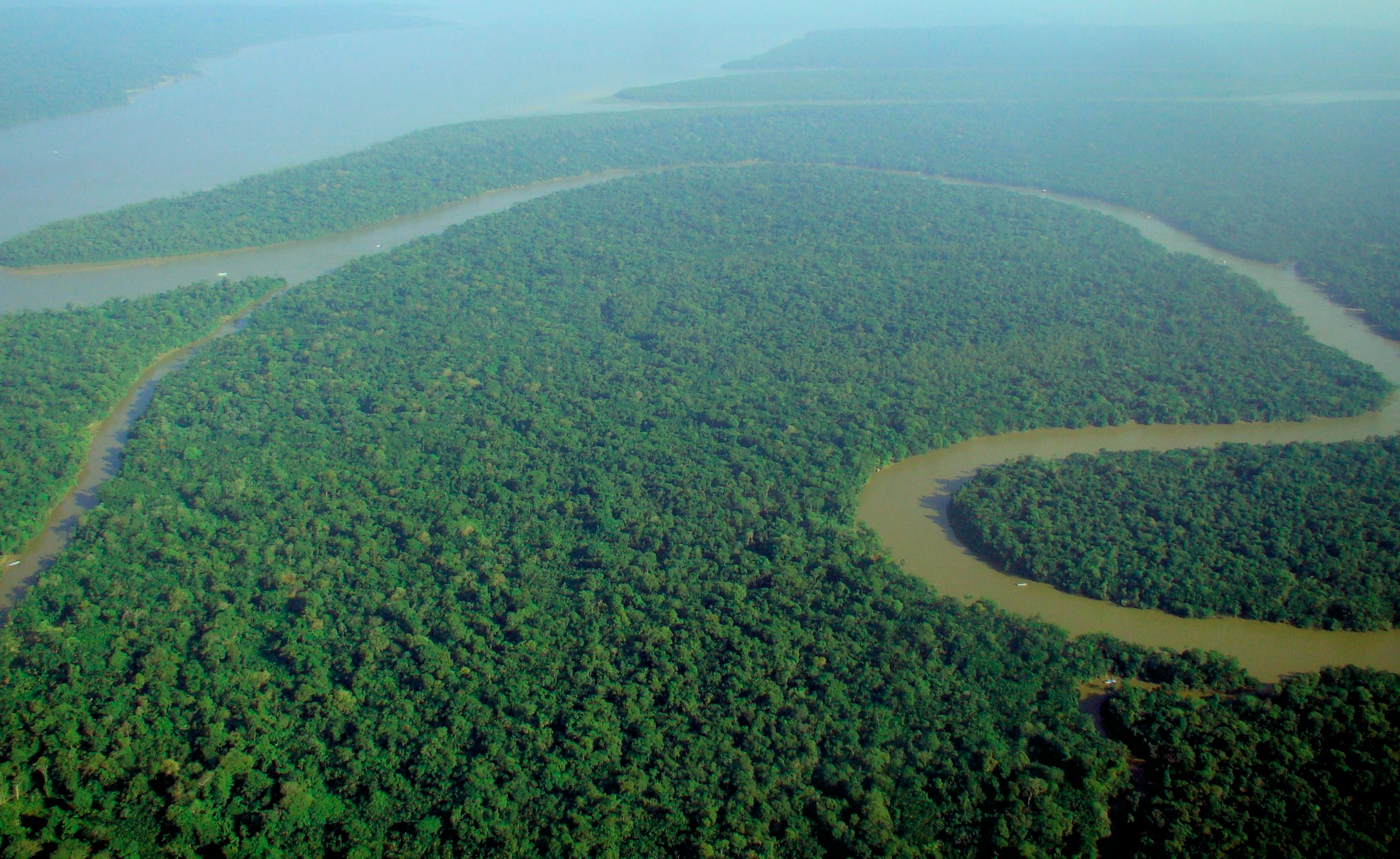 Global fund groups issue deforestation warning